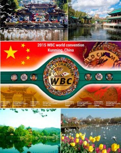 WBC-CONVENTION-2-238x300