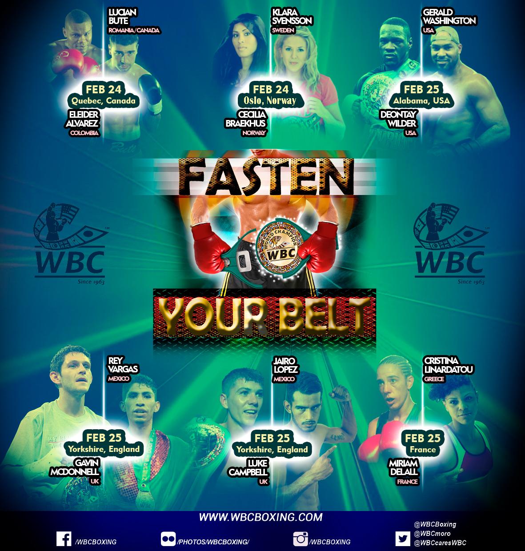 fasten your belt feb2017