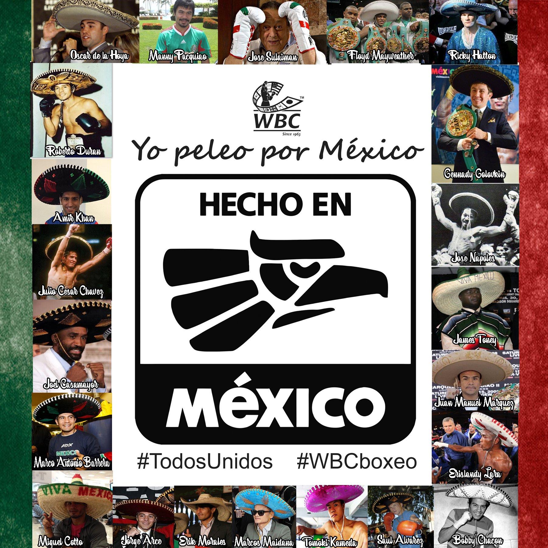 vota-mexico