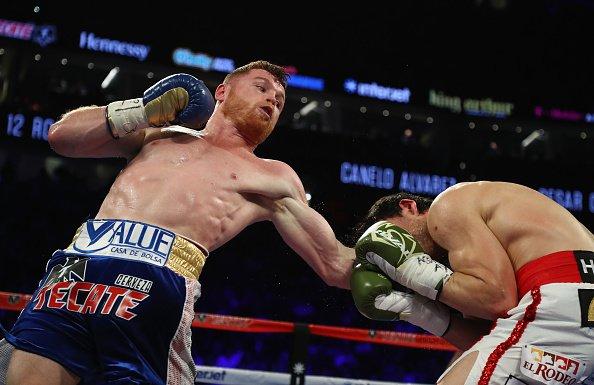 canelo-chavez-fight (4)
