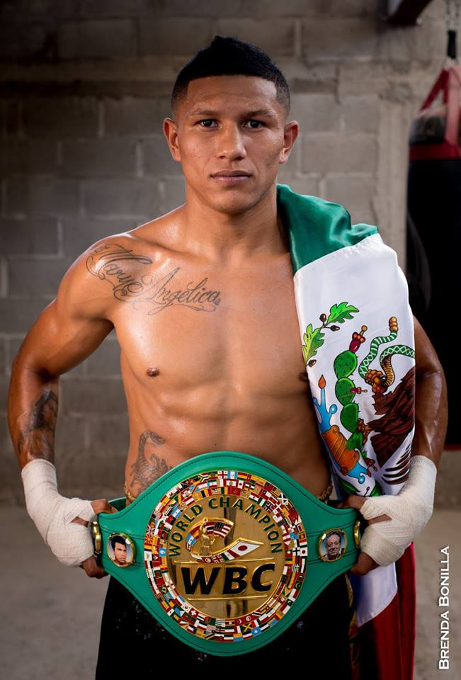 berchelt-wbc-belt