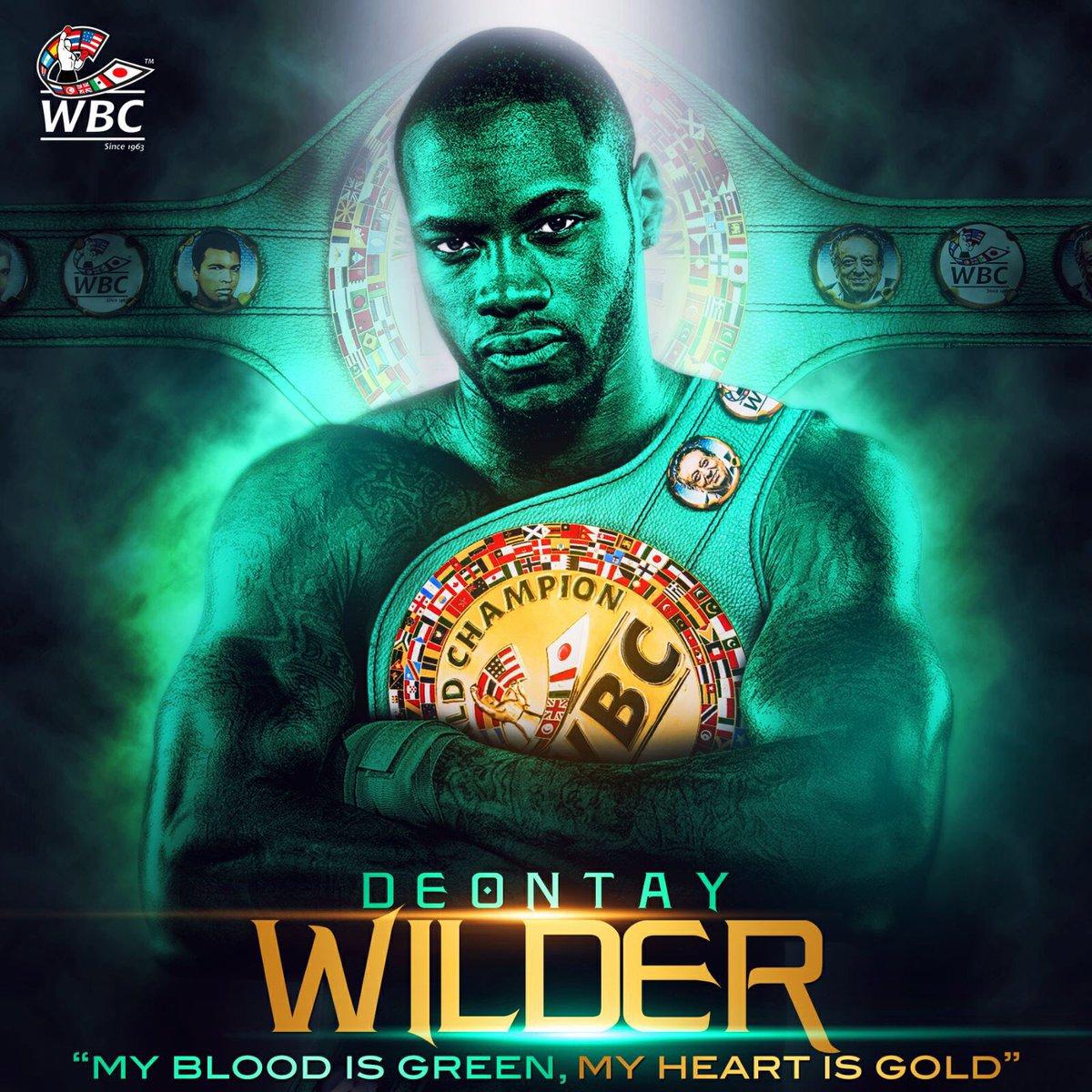 WILDER-2